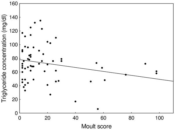 Changes in plasma triglyceride concentration with moult score of young common snipe in the advanced stage of post-juvenile moult.