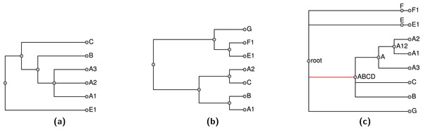 Exemplified input trees (A–B) and pruned taxonomy tree (C) from Fig. 4.