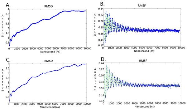 Molecular dynamics simulationcharts for the  Trypanosoma brucei brucei DdRpII RPB1 models.