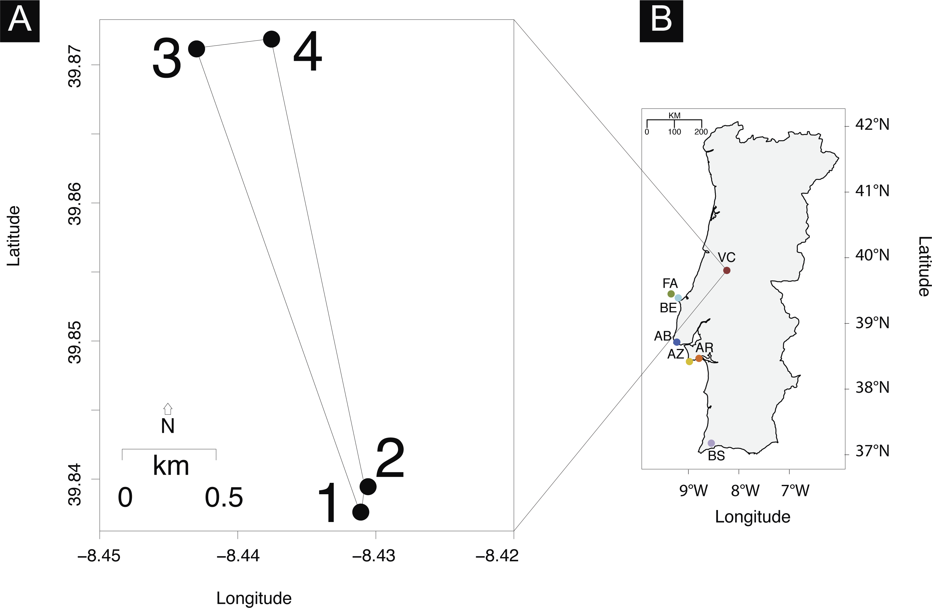 High unexpected genetic diversity of a narrow endemic terrestrial ...