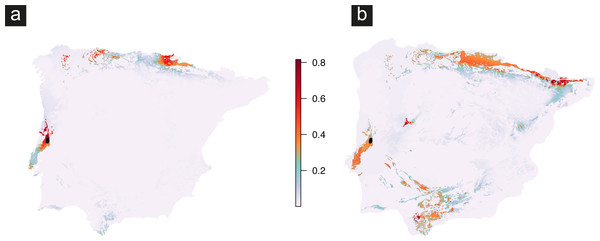 Predicted geographic distribution built with presences of Vale da Couda individuals and based on (A) current climate, and (B) Last Glacial Maximum (LGM) conditions.