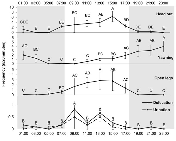 Frequency of different behavioral events (n∕20min) for each hour.
