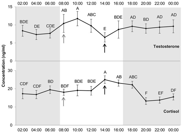 Levels of testosterone and cortisol (ng/ml) per hour.