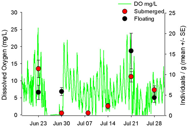 Hourly dissolved oxygen concentration (mg/L) with mobile invertebrates on floating and submerged mats.