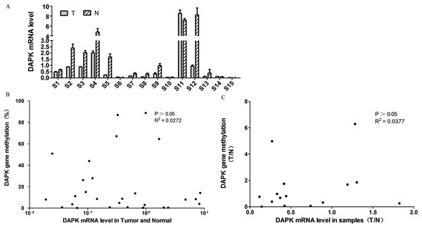 Analysis of the correlation between DAPK mRNA and promoter methylation in breast cancer samples.