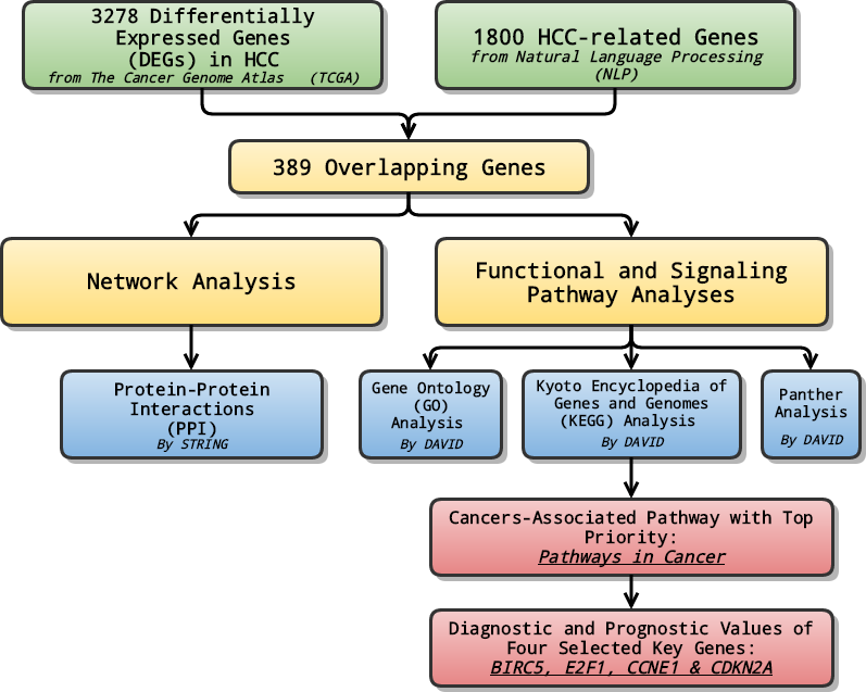 From big data to diagnosis and prognosis: gene expression