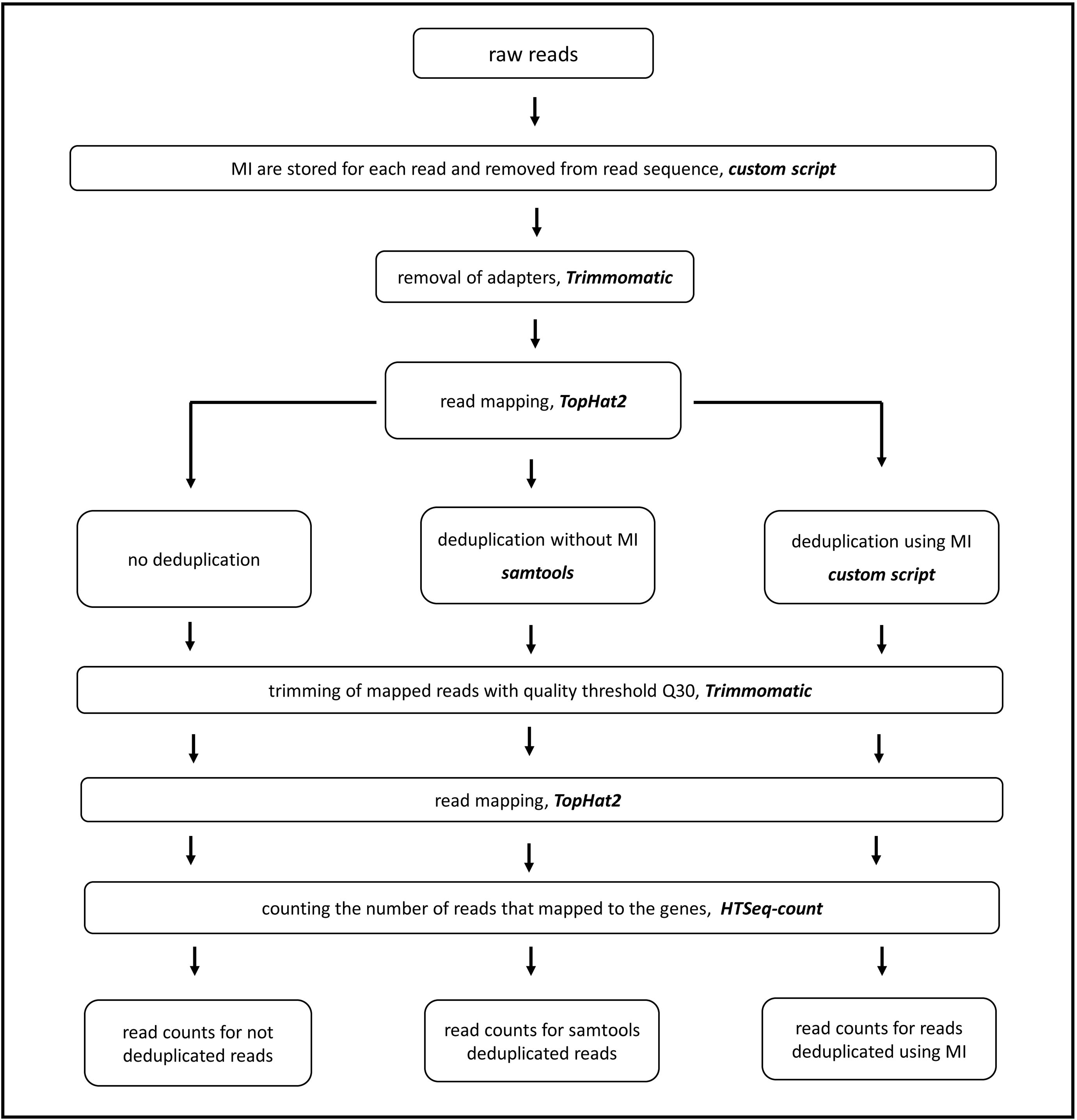 Effect of method of deduplication on estimation of