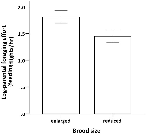 Effect of brood size on parental reproductive effort.