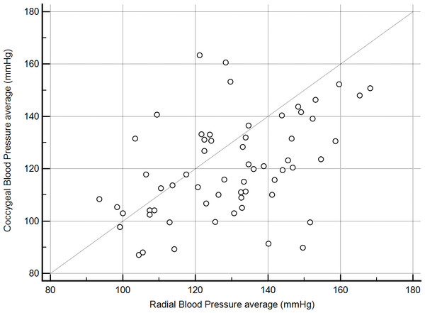 Correlation between mean indirect radial and coccygeal systolic arterial blood pressure measurements collected via Doppler ultrasonic flow detector for 62 privately-owned conscious dogs.