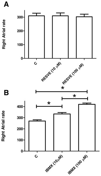 Effects of resveratrol and IBMX on rat sinus node rate.