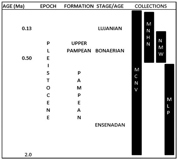 Pleistocene formations, Stage/Age and the locations of the collections over time.