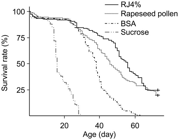 Survival curves of caged honey bees (Apis mellifera) fed with rapeseed (Brassica) bee-collected pollen and 4% RJ.