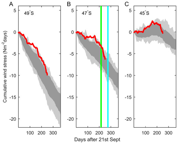 Cumulative alongshore component of nearshore wind stress (red) from ECMWF ERAInterim reanalysis winds at latitudes (A) 49°S, (B) 47°S, (C) 45°S, with an origin time of the vernal equinox, Sep 21, 2014.