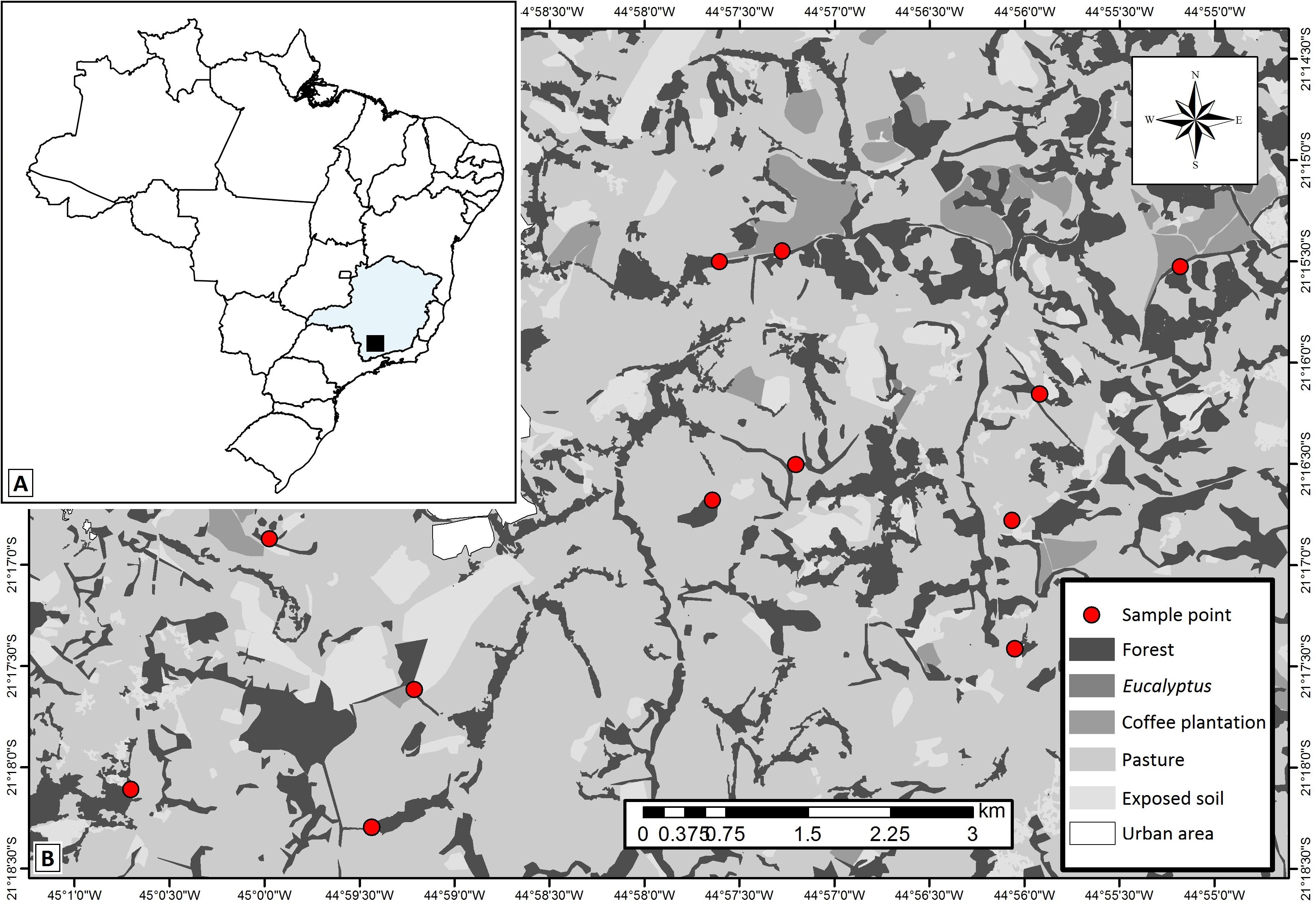 Variegated tropical landscapes conserve diverse dung beetle ...