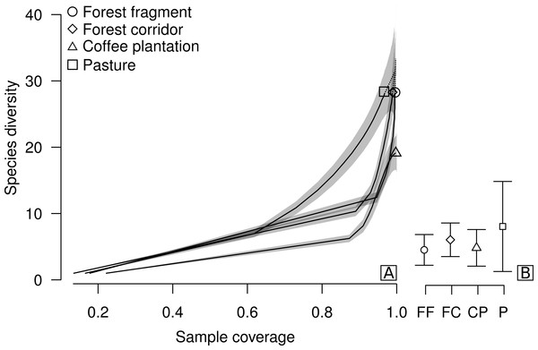 Sample coverage-based species accumulation curve of dung beetle sampled in forest fragment, forest corridor, coffee plantation, and pasture of 12 landscapes in Lavras, Brazil (A).