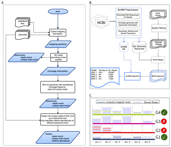 Overview of the SLIMM methodology: (A) The SLIMM algorithm: SLIMM takes two inputs, i.e., the SLIMMDB and an alignment file in either SAM or BAM format and calculates statistical data for each reference sequences in the database. SLIMM uses coverage information to leave out reference sequences from consideration and recalculate the statistics again. We use this, in turn, to receive read counts that are uniquely mapped to a clade at a given taxonomic rank. (B) SLIMM Pipeline: the preprocessing module of SLIMM downloads/updates all available genomes of a certain interest group (e.g., Archaea, Bacteria, Viruses or any combination of them) and tags the sequences with their corresponding taxonomic information. A read mapper is then used to map the WGS reads to these reference sequences. Then SLIMM algorithm uses the mapping results to produces taxonomic profile reports. (C) Reference filtering based on coverage information: an illustration of how SLIMM uses reference filtering based on coverage information: G2 and G3 could not pass the filtering steps because they did not contain enough coverage by uniquely mapped reads and all reads respectively.