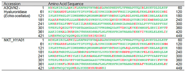 Pairwise sequence alignment of hyaluronidase transcript from the venom gland transcriptome of NK-T in comparison to the annotated hyaluronidase sequence.