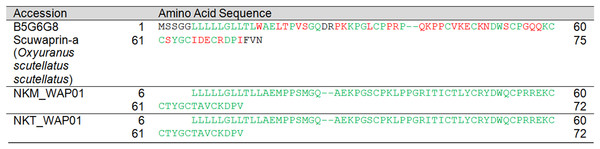 Pairwise sequence alignment of waprin transcripts from the venom gland transcriptomes of NK-M and NK-T in comparison to the annotated waprin sequence.
