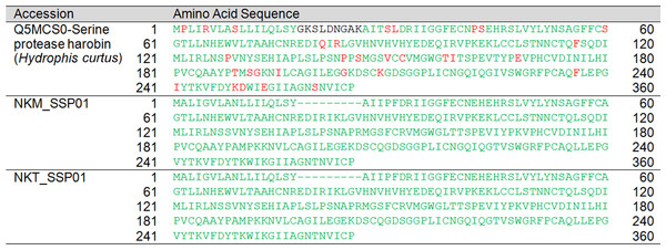 Pairwise sequence alignment of snake venom serine protease (SVSP) transcripts from the venom gland transcriptomes of NK-M and NK-T in comparison to the annotated SVSP sequences.