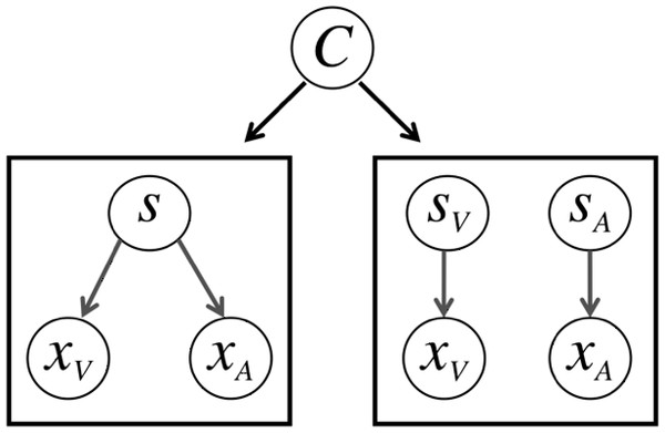 The causal inference model.