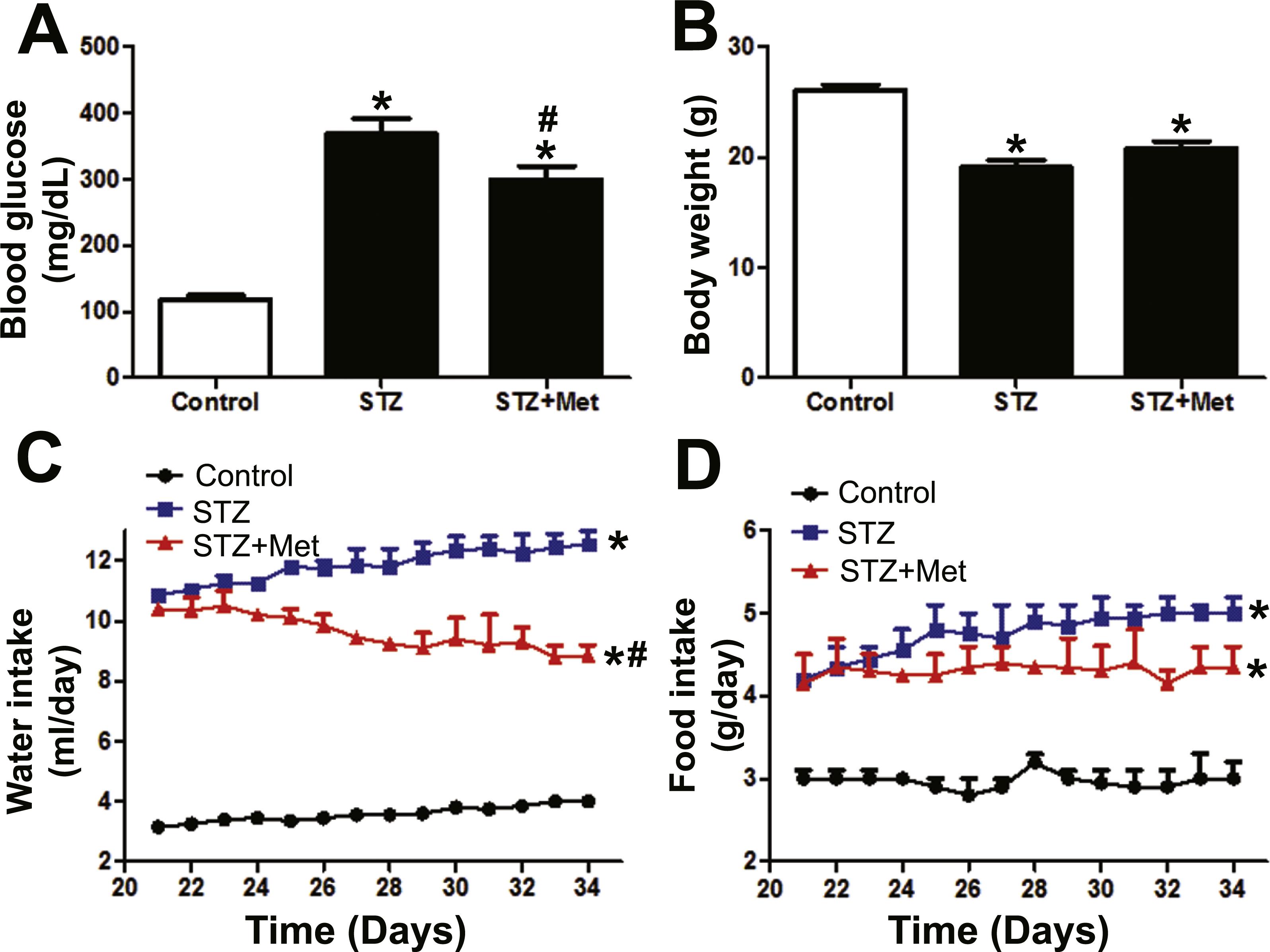 Metformin Ameliorates Insulitis In Stz Induced Diabetic Mice Peerj