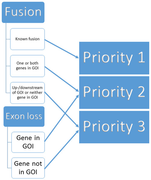 Binning of structural variants into 3 priorities.