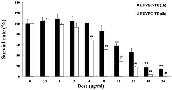 Effects of TE on the viability of HUVECs. HUVECs were treated with the following agents: 0–24 μg/ml of TE.