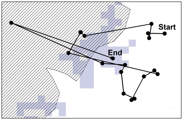 "A hypothetical example of a ""walk"" extracted for the study."