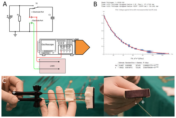 (A) Generator and data acquisition schematic. (B) An illustrative waveform applied in pig liver for 1,000 V and a time constant of 37 ms including statistical details of the measurement and fit from the DAC. (C) Needle configuration.