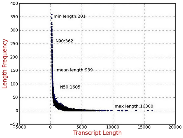 Length distribution of assembled transcripts.