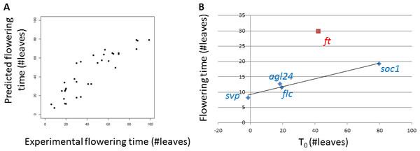 Comparison between predictions and experimental data.