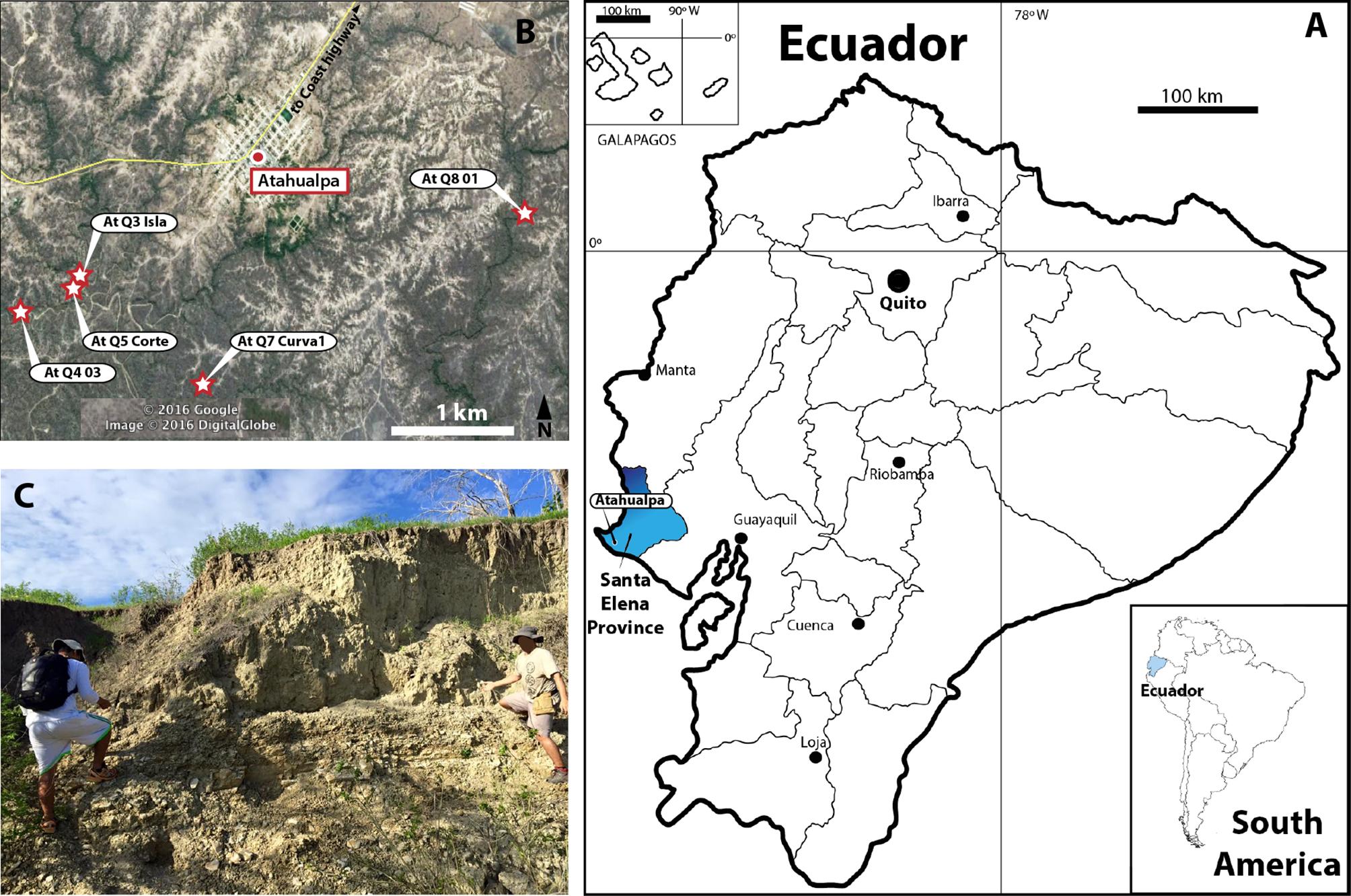 New Findings Of Pleistocene Fossil Turtles Geoemydidae - Ecuador provinces map