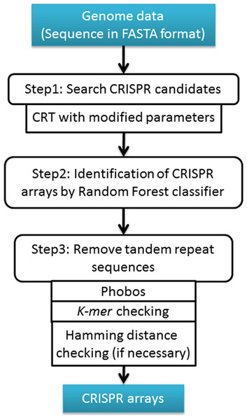 The workflow of CRISPR Finder by Random Forest (CRF) Pipeline.