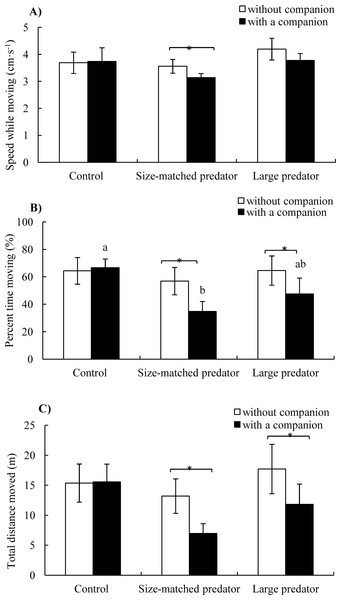 The speed while moving (A), percent time moving (B) and total distance moved (C) of the black carp in the control and experimental treatments during without and with a companion (mean ± S.E., N = 6).