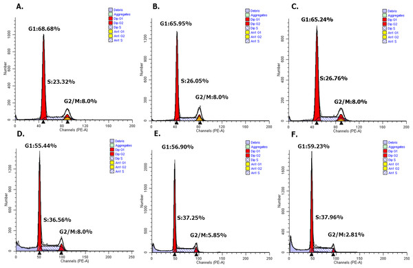 Overexpressed hsa-miR-138-2-3p arrested cell cycle at G1/S phase after radiation by flow cytometry.