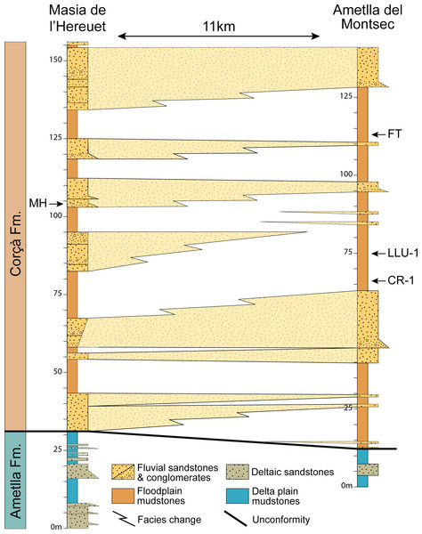 Regional correlation between the sections of Masia the l'Hereuet and L'Ametlla del Montsec.
