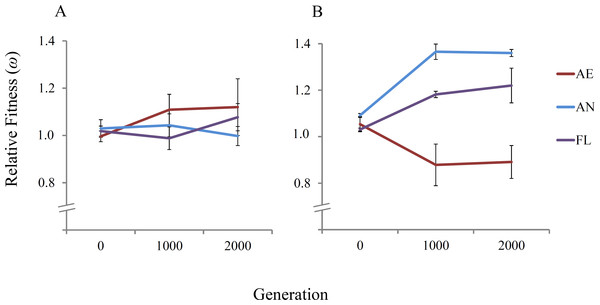 Mean relative fitness of lineages over 2,000 generations.