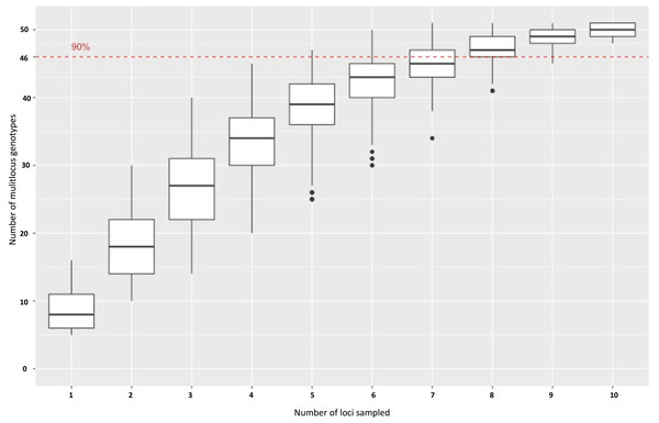 A genotype accumulation curve for 51 isolates of P. cubensis and P. humuli across 11 loci.