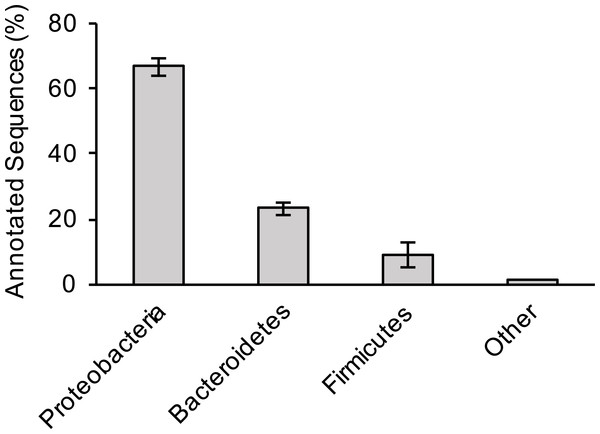 Bacterial composition of sewage samples.