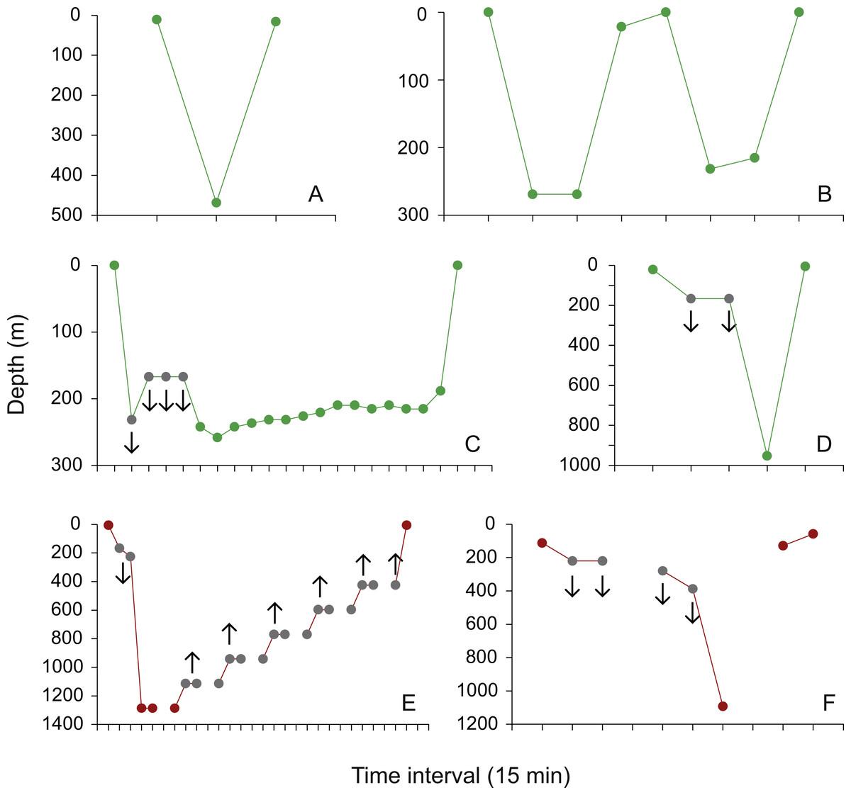 oceanic adults coastal juveniles tracking the habitat use of whale rh peerj com
