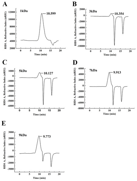 The weight-average molecular weight assay of WSC1-5 with HPLC.