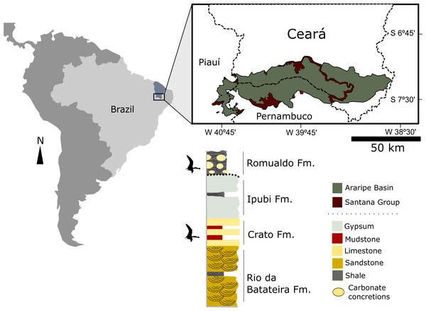 Location map of the Araripe Basin, northeastern Brazil and simplified stratigraphic chart of the Santana Group.