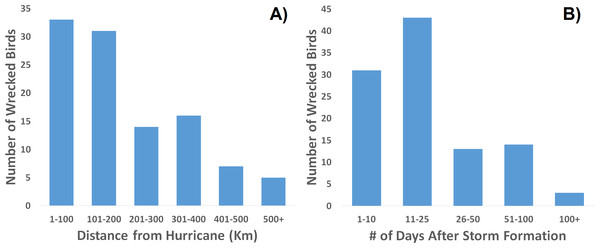 Frequency distribution of recovered, wrecked birds in relation to hurricanes of the season.