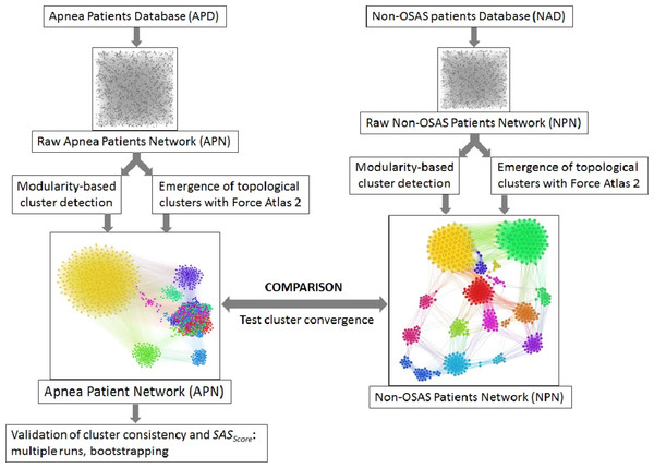 Overview of the proposed dual clustering methodology (modularity classes represented with distinct colors and topological clusters emerged from running the force directed layout Force Atlas 2), along with testing cluster formation against non-OSAS control patients (i.e., showing that risk factors converge differently for OSAS and non-OSAS patients), cluster consistency and SASScore validation.