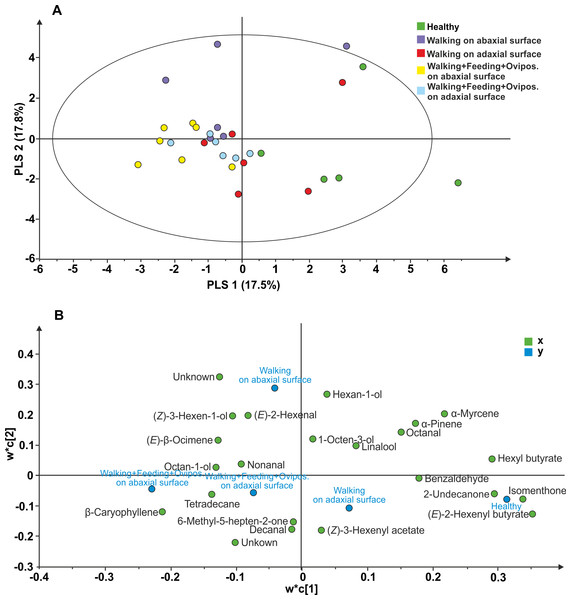 Projection to latent structures discriminant analysis (PLS-DA) comparison of the volatile compounds emitted by individual V. faba plants.