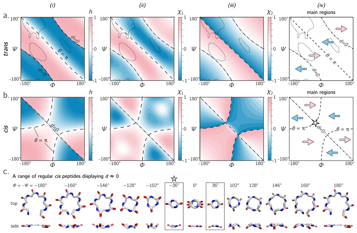 An exhaustive survey of regular peptide conformations using