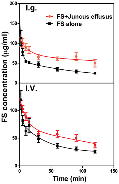 The plasma concentration–time course of FS in rats pretreated with Juncus effusus extract.