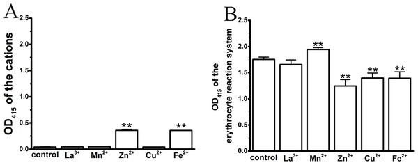 Effects of the cations on an erythrocyte reaction system by spectrophotometry, where the maximal anti-hemolytic concentrations of the cations were used.