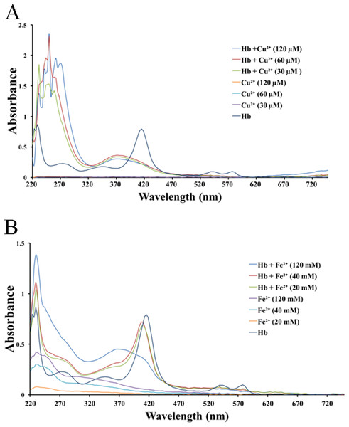 UV–Vis spectroscopy of hemoglobin solution.