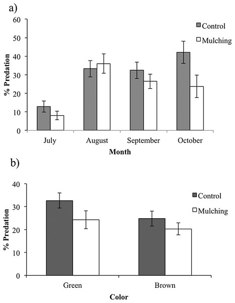 Percent predation on caterpillar clay models (mean ± SE) during the rainy season of 2015: (A) in the control and mulching restoration sites, month vs. predator type interaction: F(3,6) = 10.059, P = 0.009, (B) on green and brown caterpillar clay models (mean ± SE) in control and mulching restoration treatments.